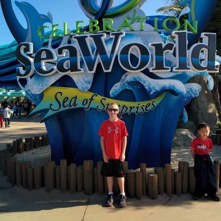 Thursday Things – Sea World