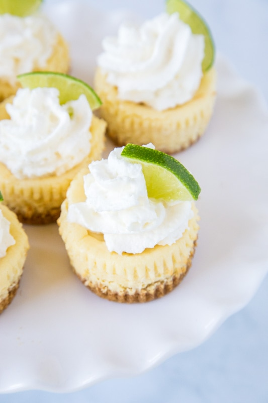 Key Lime cheesecakes topped with whipped cream and lime slices