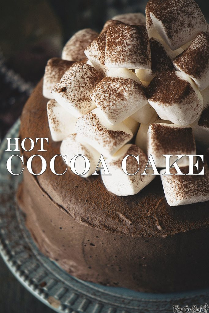 Hot Cocoa Cake {Pass The Sushi}
