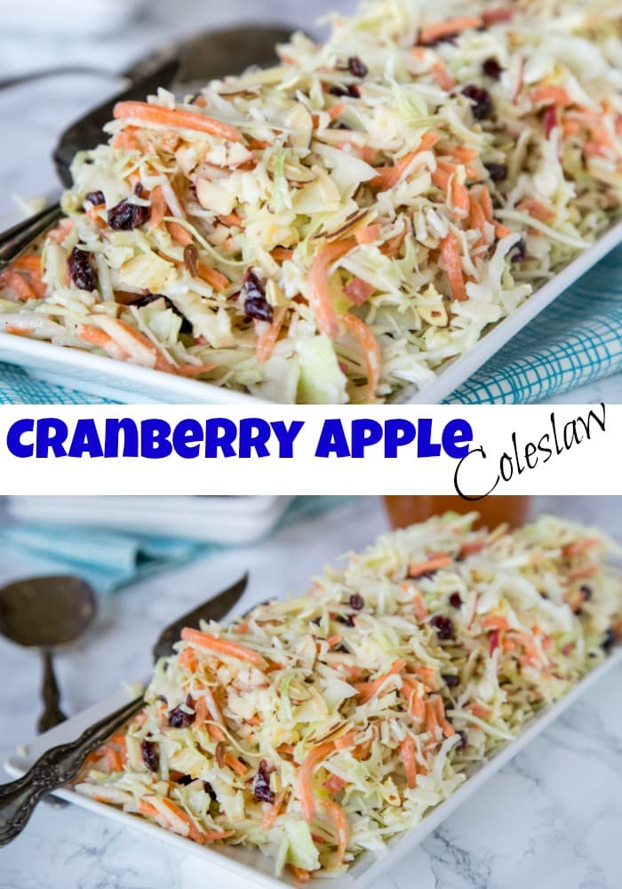 Cranberry Apple Coleslaw - an easy homemade coleslaw that you can make ahead of time, and bring to any summer get together.  Or serve at home with just about anything!