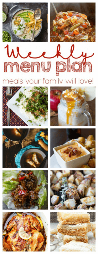 Weekly Meal Plan Week 67 – 10 great bloggers bringing you a full week of recipes including dinner, sides dishes, and desserts!