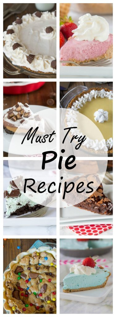 20 Must Try Pie Recipes - A round up of 20 great pie recipes you are going to want to try right away!