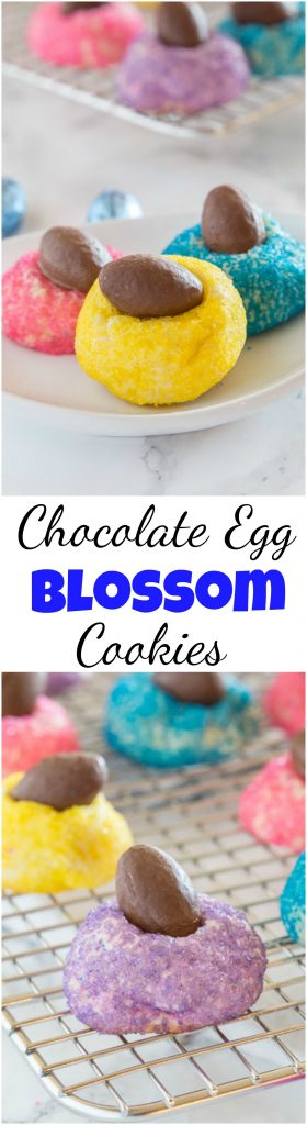 Mini Chocolate Egg Blossom Cookies - get ready for Easter with these fun blossom cookies!  Sugar cookie blossoms rolled in colored sugar and then topped with a chocolate egg!