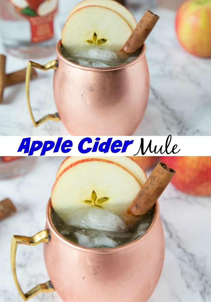 Apple Cider Moscow Mule - a fun fall cocktail with apple cider, apple vodka and ginger beer! Turn a Moscow Mule into a delicious fall treat!