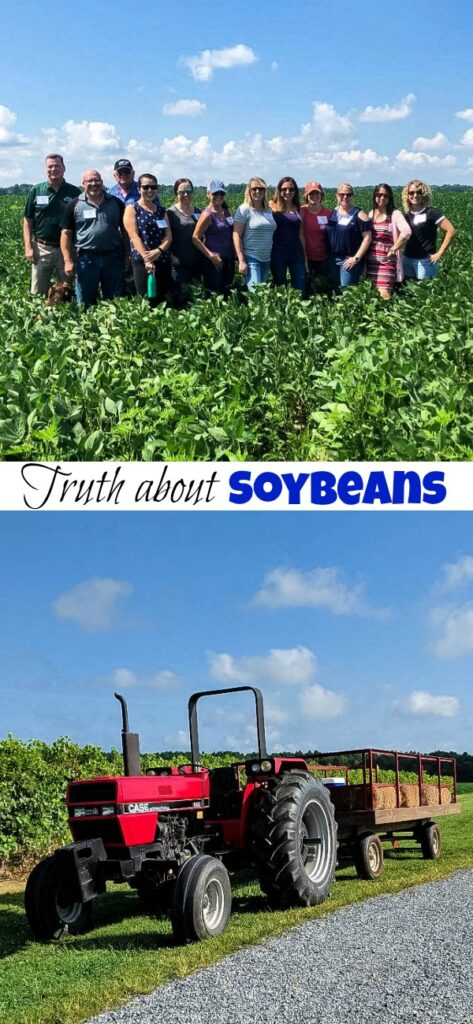 The Truth About Soybeans - Do you know how soybeans are grown?  Should we be eating more of them? How can I incorporate them in my diet?