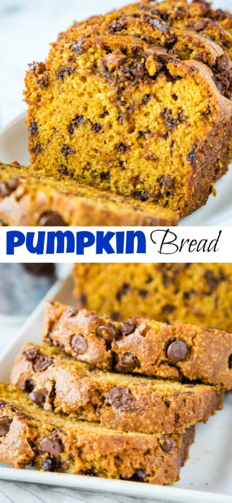 Chocolate Chip Pumpkin Bread - soft and tender pumpkin bread loaded with chocolate chips.  Full of cinnamon and spices and perfect for fall!