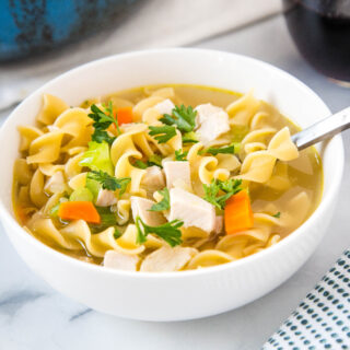 cropped in pic of turkey soup