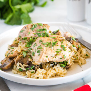 cropped picture of instant pot chicken thighs on plate with rice