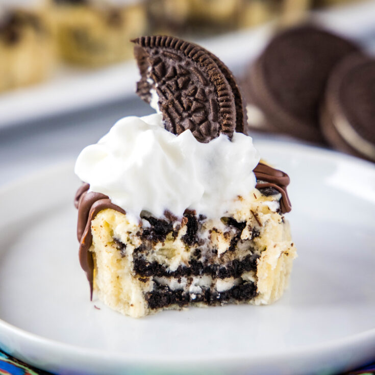 cropped oreo cheesecake with bite taken out of it