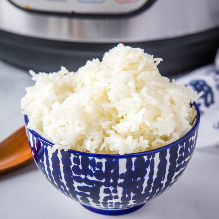 close up of bowl of white rice