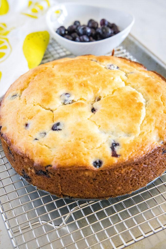 baked blueberry lemon cake on cooling rack