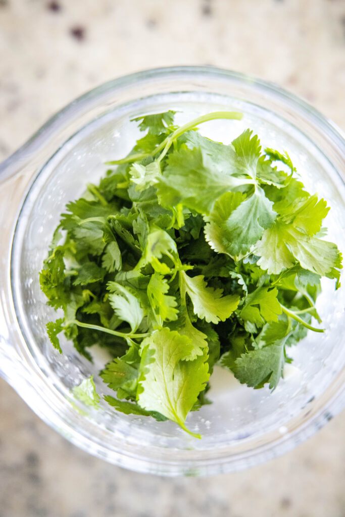cilantro leaves in a blender
