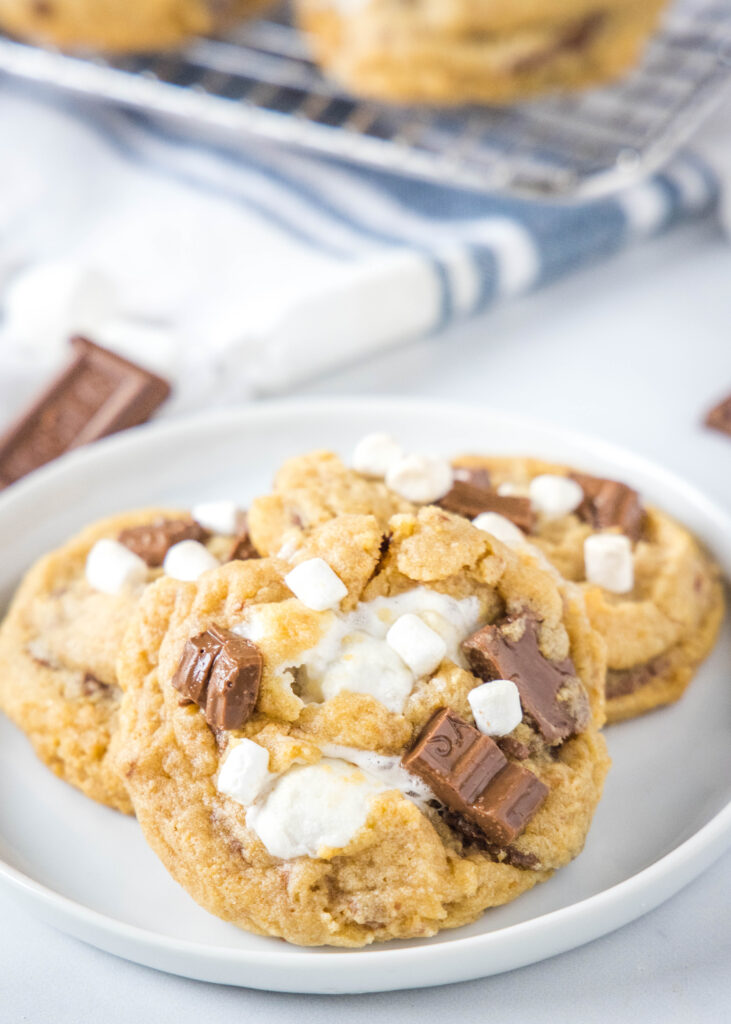 a plate with 3 cookies on it